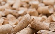 Comprar de hueso de aceituna Luque - Calor Renove